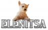 Dog elenitsa